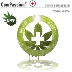 CompassionDP.jpg