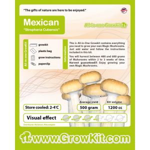 mexican-all-in-one-growkit-1200-cc