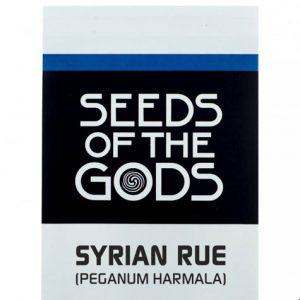 syrianrueA.jpg